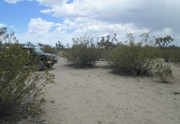 The FJ peeks out from behind a creosote bush as we leave the corral