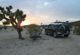 I set up my tent behind a creosote bush as the sunset begins to fade