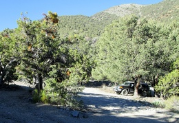 I wake up at the little Thorndike Campground in Death Valley National Park