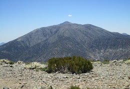 Wildrose Peak provides clear views over to Telescope Peak, which is a few thousand feet higher