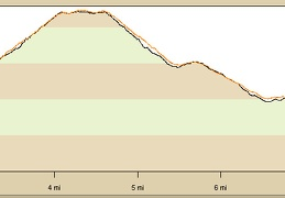 My Wildrose Peak hike came to 8.5 miles round-trip with about 2300 feet of elevation gain