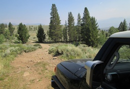 I drive the meadow trail a little further, then drive back to the Emma Lake trailhead