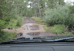 Here's a little stream to drive through on Lobdell Lake Road
