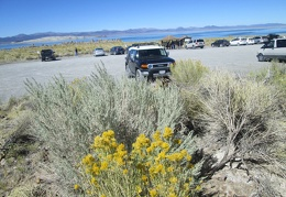 The parking lot at Mono Lake South Tufas is only half full right now