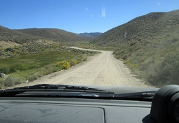 Rabbitbrush lines the road as we drive away from Obsidian Campground