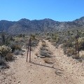 My trail here is actually an old road, like many Mojave Desert trails