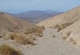 I decide to walk down the canyon toward Wingate Wash