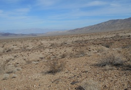 Wingate Wash is so vast and empty