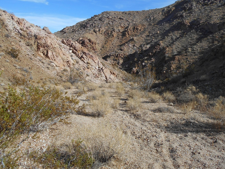 I follow a faint burro trail; no human footprints here
