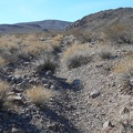 The old road leading into the Quail Mountains has been mostly reclaimed by erosion
