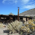 Rabbitbrush surrounds the old cabin at Horse Thief Spring