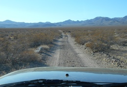 After entering Death Valley National Park, I go for a drive up Gold Valley Road
