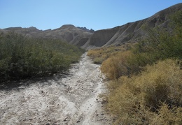 I park at China Ranch date farm and begin the hike down the Amargosa River Trail