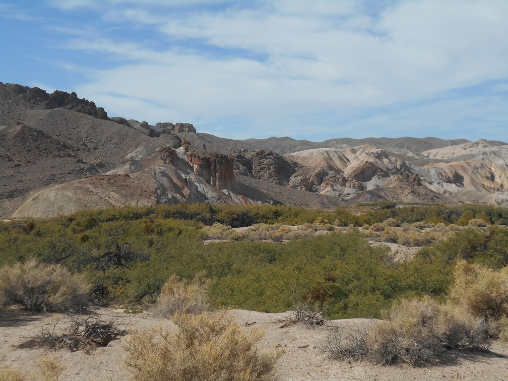 2322-amargosa-river-trail.jpg
