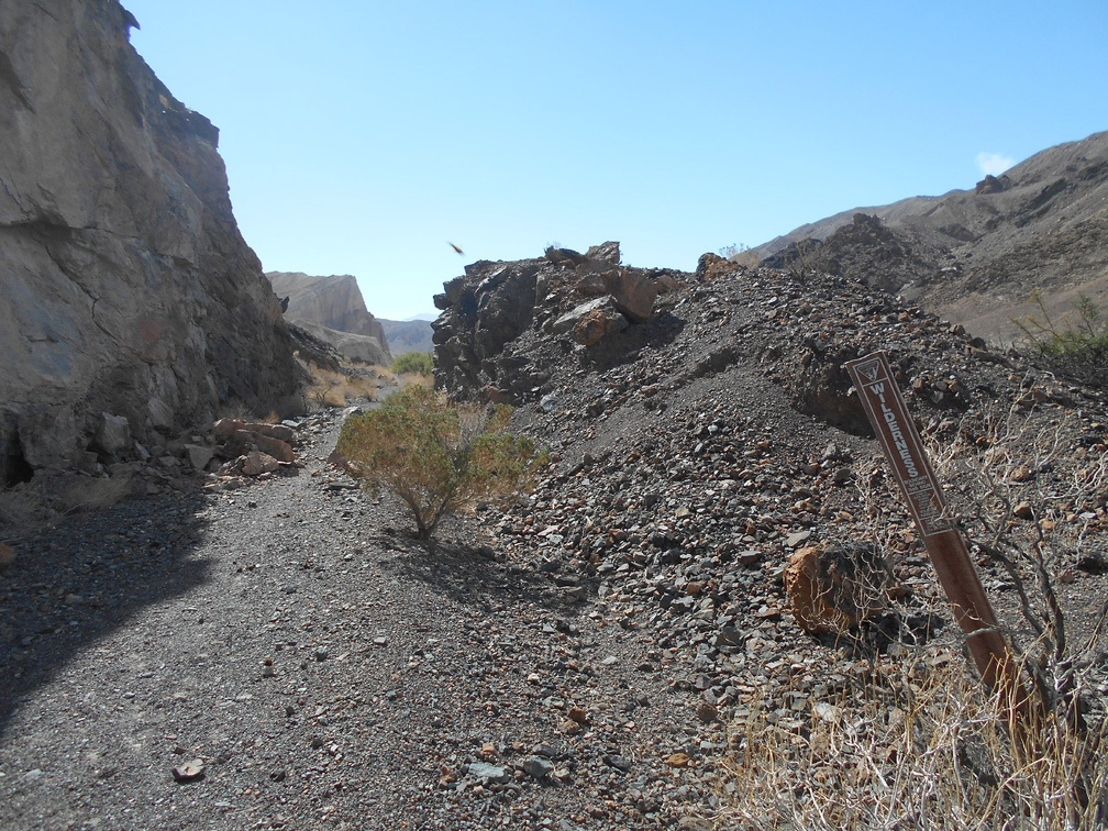 2334-amargosa-river-trail.jpg