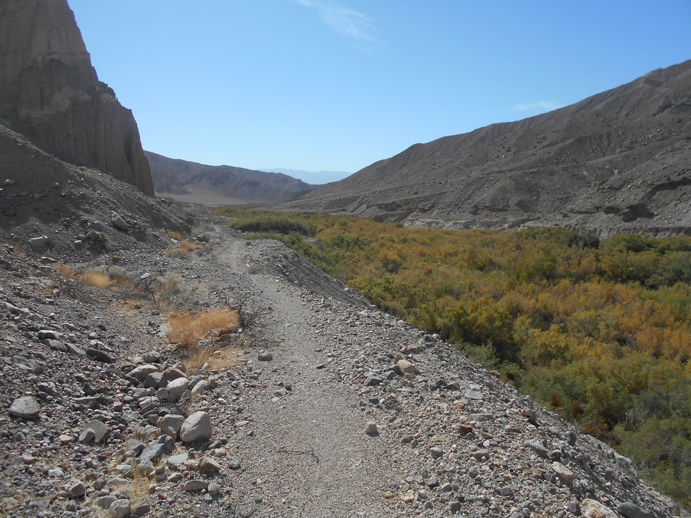 2382-amargosa-river-trail.jpg