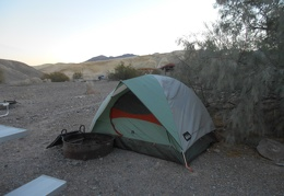I pitched my tent right up to the athel trees to protect from the strong winds last night