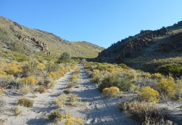 I take a look back up the road toward Horse Peak before entering the valley