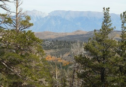 The steep trail provides great views across to the White Mountains