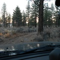 I drive to a cozy campsite spot in the Inyo National Forest that will be home for tonight