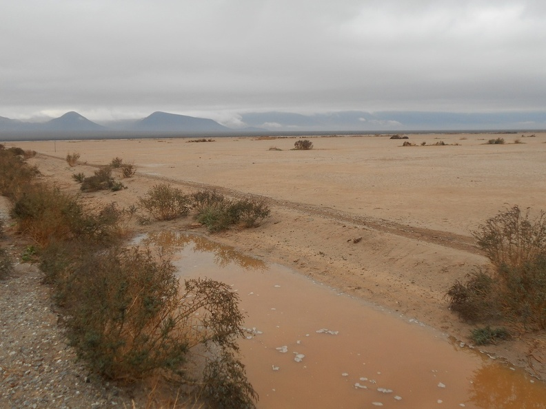 Muddy water collects along Hwy 190 at Panamint Dry Lake
