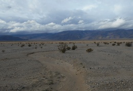 I drive over a dry stream that ends in Panamint Valley