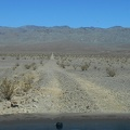 Minietta Road crosses Panamint Valley and rises a little up toward the alluvial fan