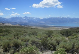 At the west end of Mono Lake is the Panum Crater area