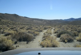 Since the FJ isn't lifted, some rabbitbrush scrapes the underside as we drive