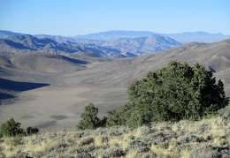 Impermanence: my view of Cowhorn Valley will disappear soon, so I'm enjoying it now