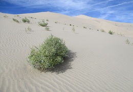 Day 7: I must climb Eureka Dunes while I'm in the area!