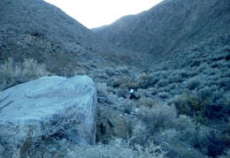 We won't have time to continue further up Thompson Canyon before it gets dark