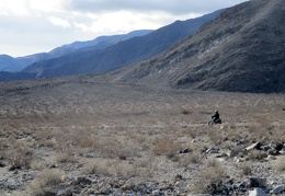 A solo motorcyclist rides Nadeau Trail by our Ash Hill campsite