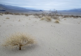 I reach the edge of the Panamint Dunes and take another look back
