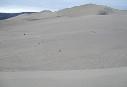 Here's a little valley in the sand