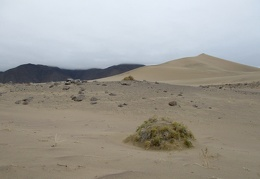 Day 6: Panamint Dunes on a cool, murky day with a little rain