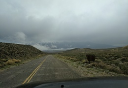 Exiting Inyo National Forest, for a short while