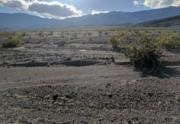 A look across the gravelly expanse of Orange Spot Valley toward the Inyo Mountains