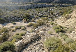 The old road erodes as it dips down into Waucoba Wash