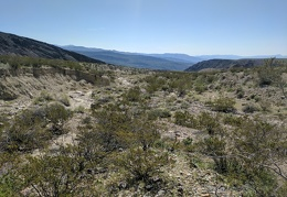 I reach Waucoba Wash and continue the gentle downhill hike