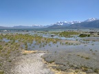 I walk over to the edge of Mono Lake