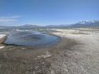 I walk around this pool on the edge of Mono Lake