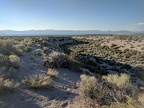 I go for a short walk to explore a dry drainage that leads down to Mono Lake