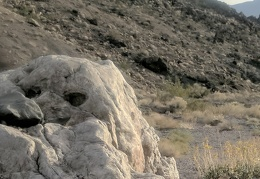 Day 8: A hike up into the Grapevine Mountains
