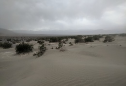 I watch the edge of the dust storm pass over Mesquite Dunes