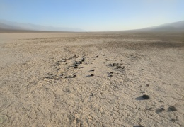 The moving rocks on Panamint Dry Lake rest in patterns