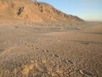 The burro footprints disappear into the rock scatter next to Lake Hill