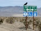 A raven commands the signage at Highway 190 and Panamint Valley Road