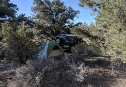 I always enjoy a campsite nestled in pinon pines