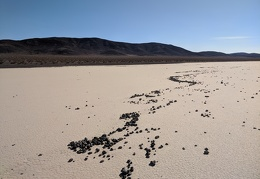 A line of windblown rocks draws a fluid line on the dry lake
